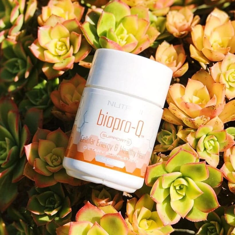 Nutrifii Biopro q supplement product photo on bed of succulents