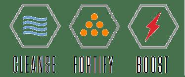 supplement benefits icons